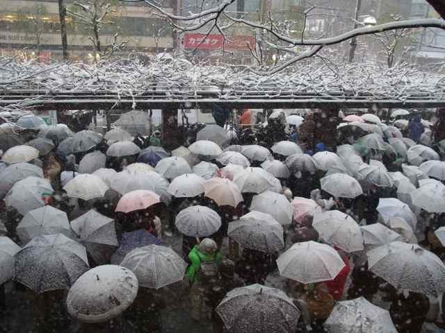 くらげのような傘、傘、傘@数寄屋橋交差点1.jpg