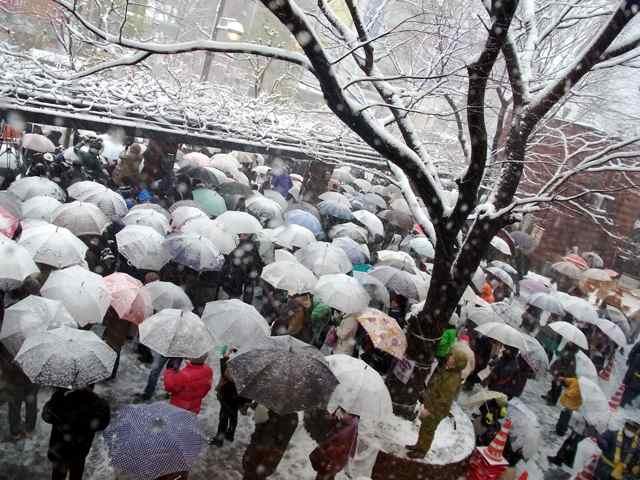 くらげのような傘、傘、傘@数寄屋橋交差点3.jpg
