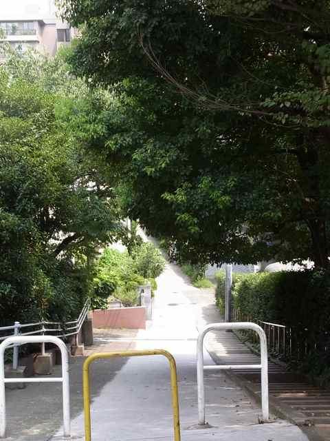 本村小学校近くの坂.jpg