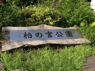 柏の宮公園1.jpg