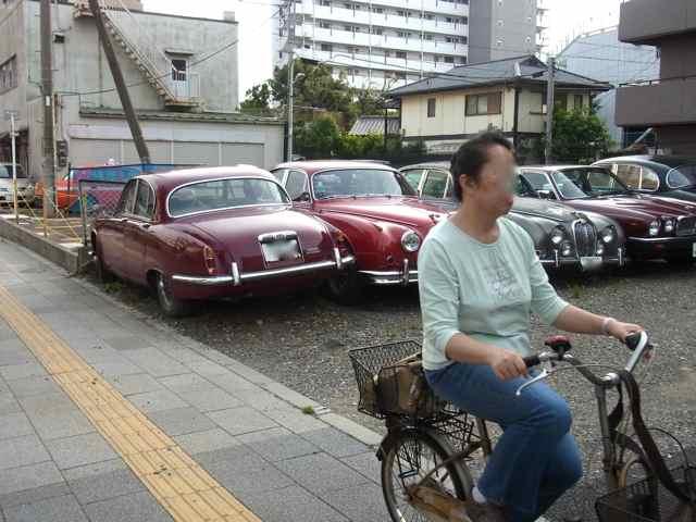 横手の駐車場には、ごろごろお宝.jpg