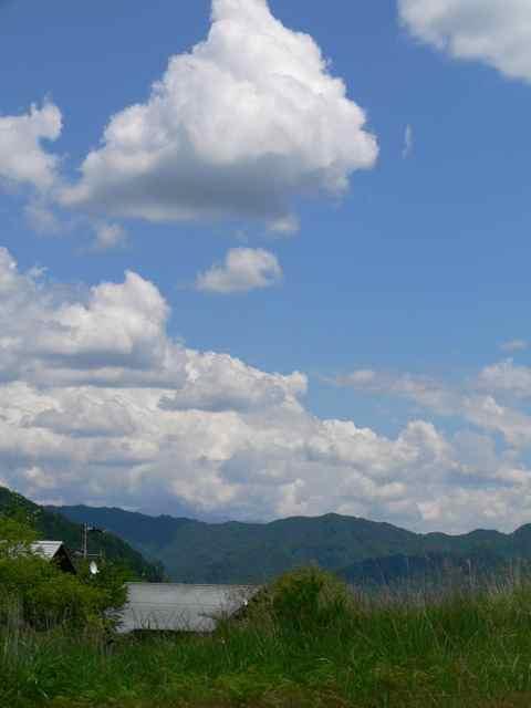 開田の緑と青1.jpg