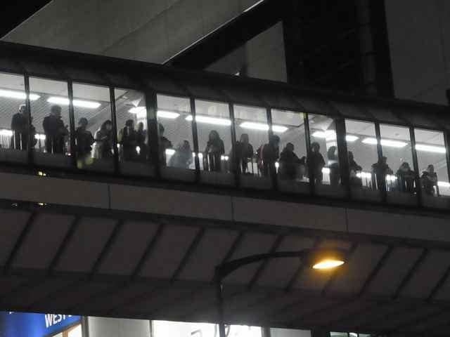 2月5日細川もりひろさん@町田駅東急ツインズ前5.jpg