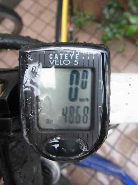 48.68.jpg