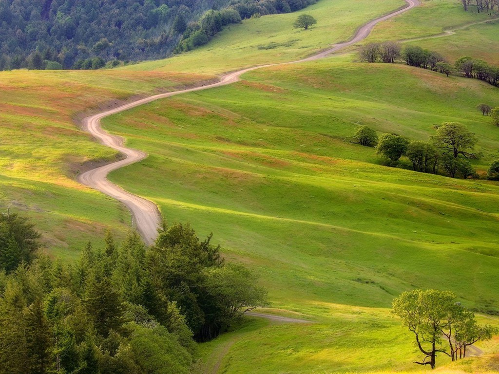 The_Long_and_Winding_Road_Wallpaper_9fod2.jpg