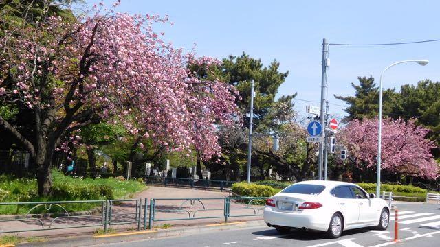 DSCN4670.jpg