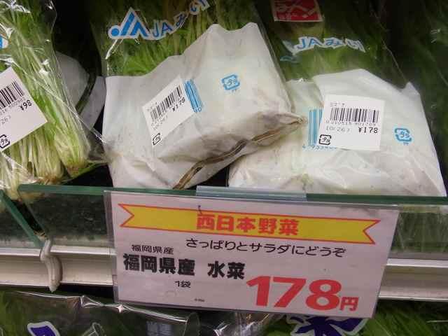 福岡水菜.jpg