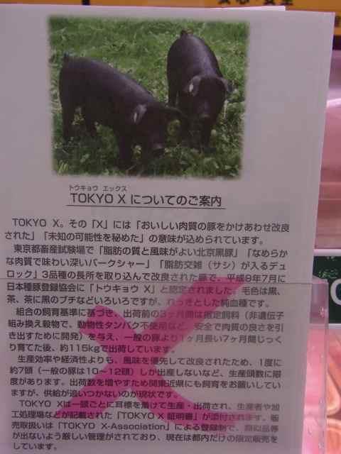 tokyo xご案内.jpg